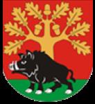 4.www.gmina-stezyca.pl