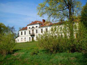 Pałac w Sobieszynie (1)